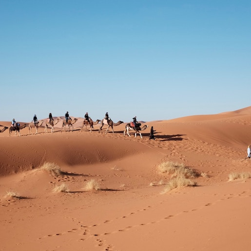 COMBO TRIP Adventure in the Rock Desert and Jbilets Mountains : Quad and Camel Ride