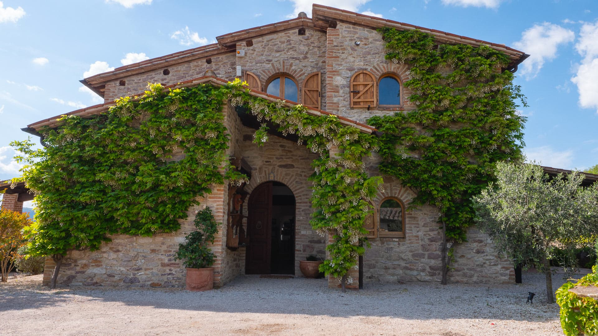 Villa Casa Olivi, Rental in Umbria